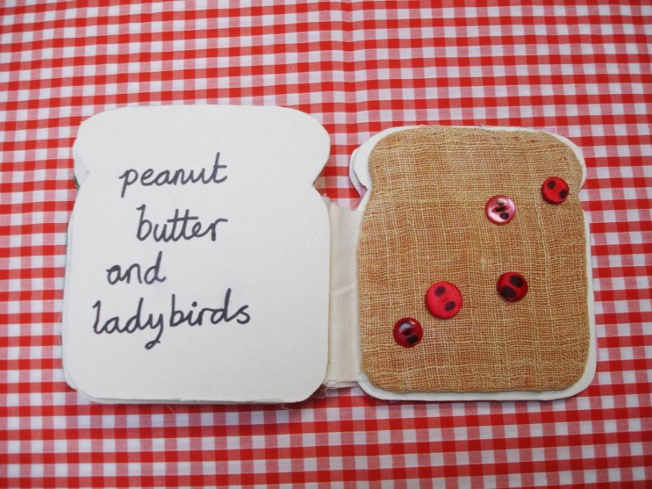 Peanut ladybirds tactile book